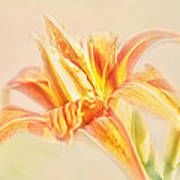 Orange Cream Art Print