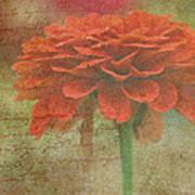 Orange Floral Fantasy Art Print