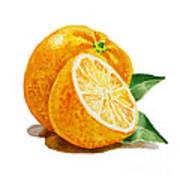Orange Print by Irina Sztukowski