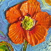 Orange Poppy II Art Print by Paris Wyatt Llanso
