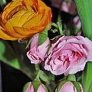 Orange Ranunculus And Pink Roses Art Print
