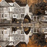 Orange Reflection Print by Vicki Jauron