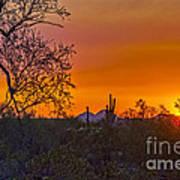 Orange Sun Setting Art Print