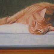 Orange Tabby Cat Art Print