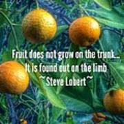 Oranges On A Limb Quote   Art Print