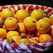 Oranges Plus More Art Print