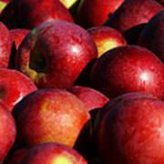 Orchard Fresh Art Print