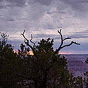 Orchestrating A Sunset At The Grand Canyon Art Print
