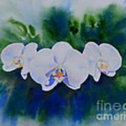 Orchid Blast Art Print