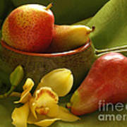 Orchid With Pears Art Print