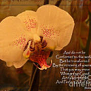 Orchid With Verse Art Print