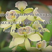 Orchids With Robert Brault Quote Art Print