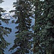 Oregon Crater Lake Panoramic Art Print