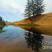 Oregon Dunes Pond Art Print