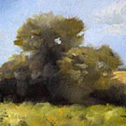 Oregon Field Study Art Print