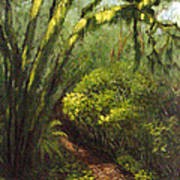 Oregon Forest Trail Art Print