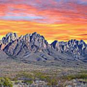 Organ Mountain Sunrise Most Viewed  Art Print