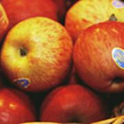 Organic Apples Art Print