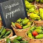 Organic Peppers At Farmers Market Art Print