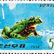 Oriental Black Firebelly Toad Art Print