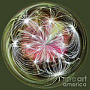 Ornamental Dandelion Art Print