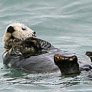 Otter At Play Art Print