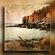 Otter Cliffs Acadia National Park Art Print