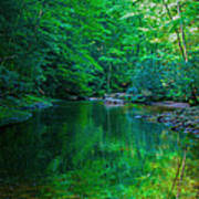 Otter Creek Reflection  Art Print
