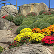 Ott's Greenhouse - Chrysanthemum Hill - Schwenksville - Pa Art Print