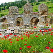 Our Entry Into Ephesus And Its Baths-turkey Art Print