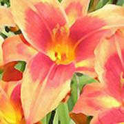 Outrageous Lilies Art Print