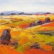 Overberg Autumn Art Print