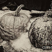 Overdue Fall Feast Remains Art Print
