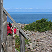 Overlooking Bay Of Fundy Art Print