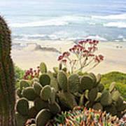 Overlooking San Elijo Beach Art Print