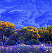 Owens Valley Fall Colors  Art Print
