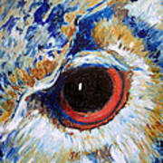 Owl Gaze Art Print