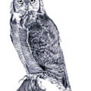 Owl Print by Lucy D