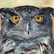 Owl Series - Owl 1 Art Print