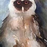 Owl Art Print by Sherry Harradence