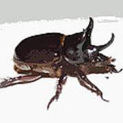 Ox Beetle Abstract Art Print