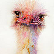 Ozzy The Ostrich Art Print