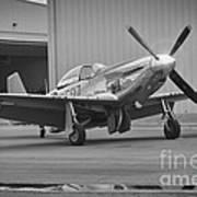 P-51d Spam Can Art Print
