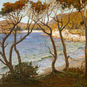 Pacific Beaches Art Print