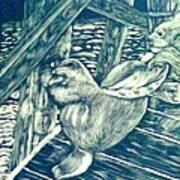 Pacific Sea Lions Art Print