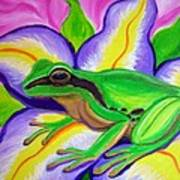 Pacific Tree Frog And Flower Print by Nick Gustafson