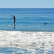 Paddle Boarder And Dolphin Art Print