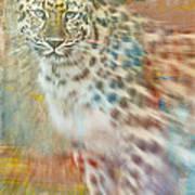 Paint Me A Cheetah Art Print