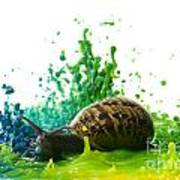Paint Sculpture And Snail 4 Art Print