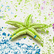 Paint Spattered Star Fish Art Print